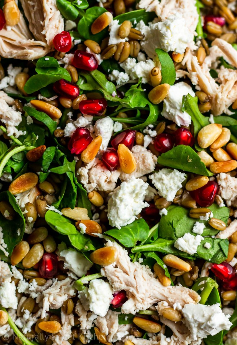 close up of a warm chicken salad with pomegranates, feta cheese, and toasted pine nuts