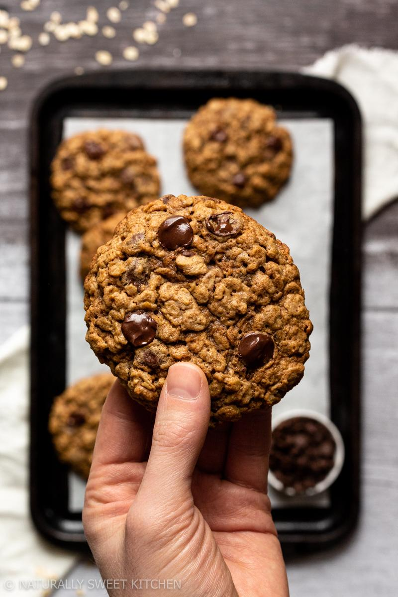 A hand holding up a refined sugar free oatmeal chocolate chip cookie with a tray of cookies underneath out of focus